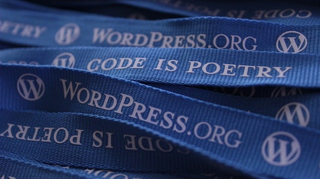 ¿Entonces es seguro WordPress